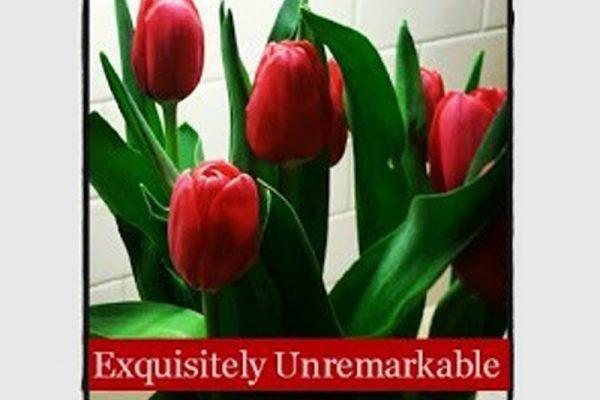 Exquisitely Unremarkable